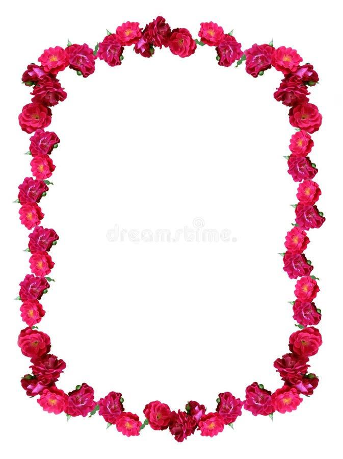 Marco salvaje de las rosas imagen de archivo