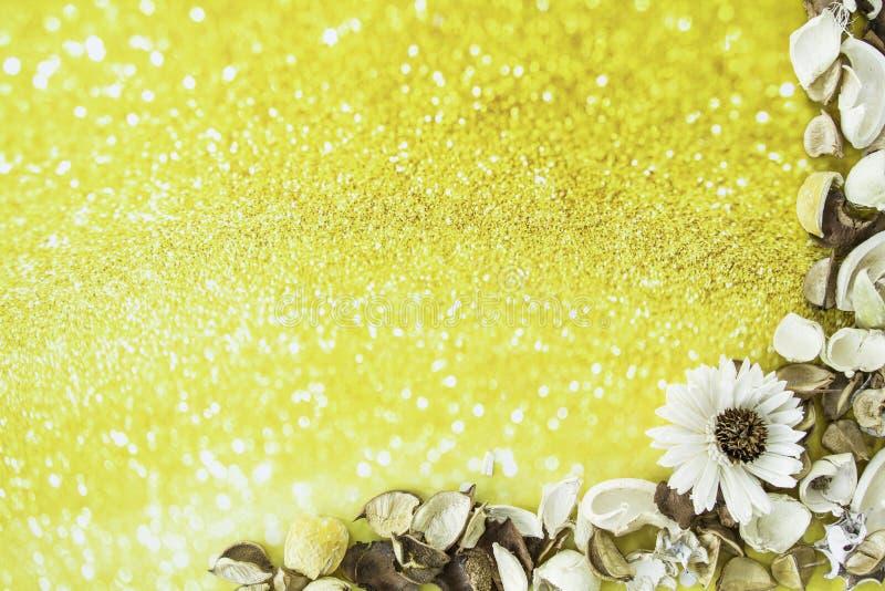 Marco secado extracto de la flor en fondo del oro fotos de archivo