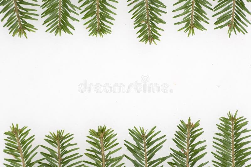 Download Marco Spruce En Fondo De La Nieve Imagen de archivo - Imagen de decorativo, hermoso: 7276315
