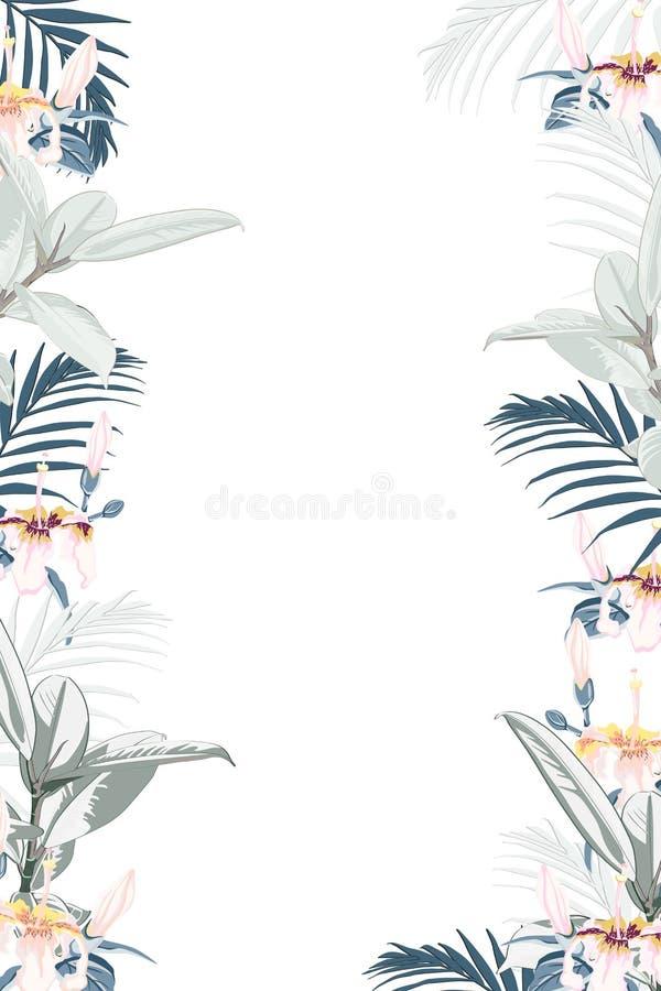 Marco tropical colorido verde del cuadrado del diseño del vector Flores, hojas de palma y ficus rosados exóticos stock de ilustración