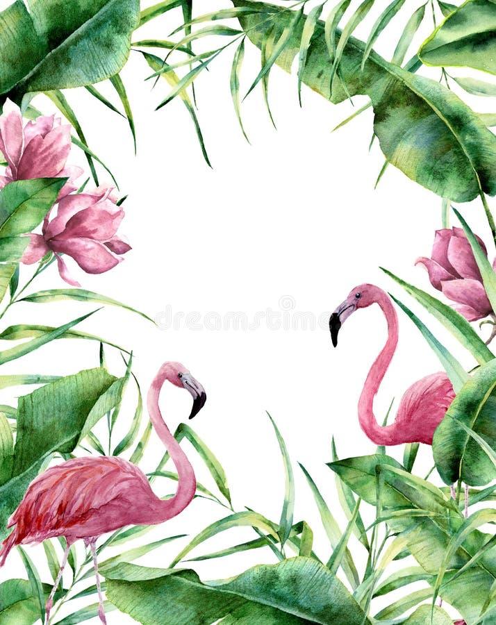Marco tropical de la acuarela Frontera floral exótica pintada a mano con las hojas de la palmera, la rama del plátano, flores de  ilustración del vector