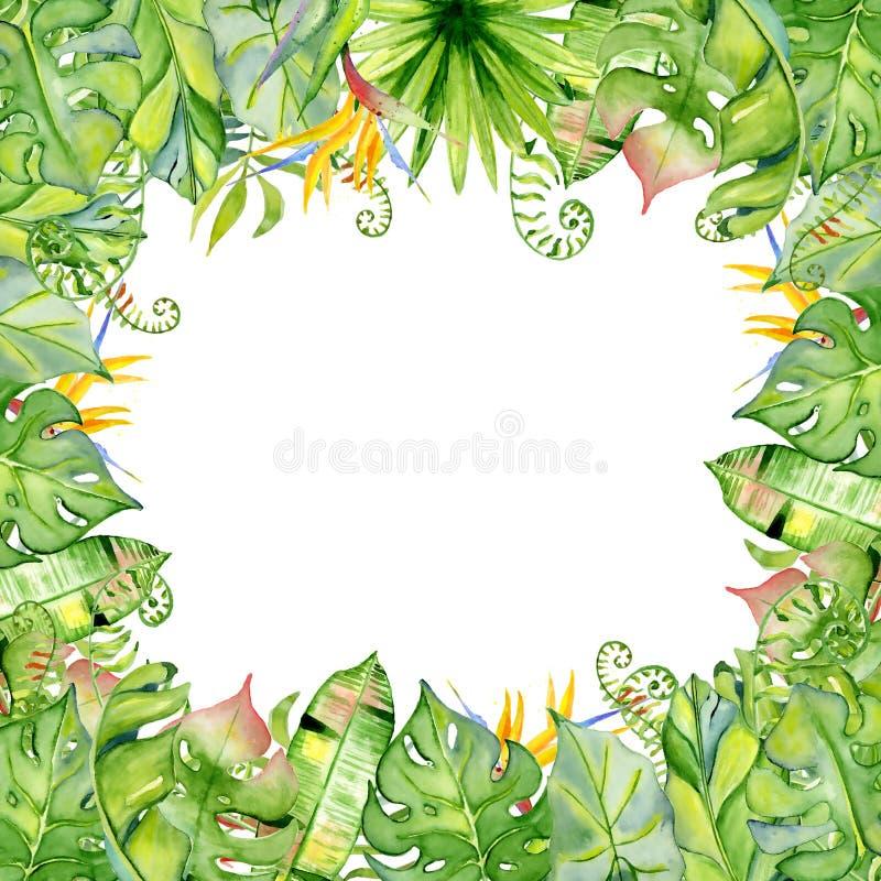 Marco tropical de las hojas de la acuarela libre illustration