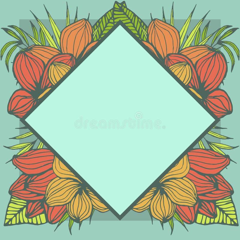 Marco tropical geométrico, diseño de espacio natural de la copia con las flores del plumeria y hojas de palma ilustración del vector
