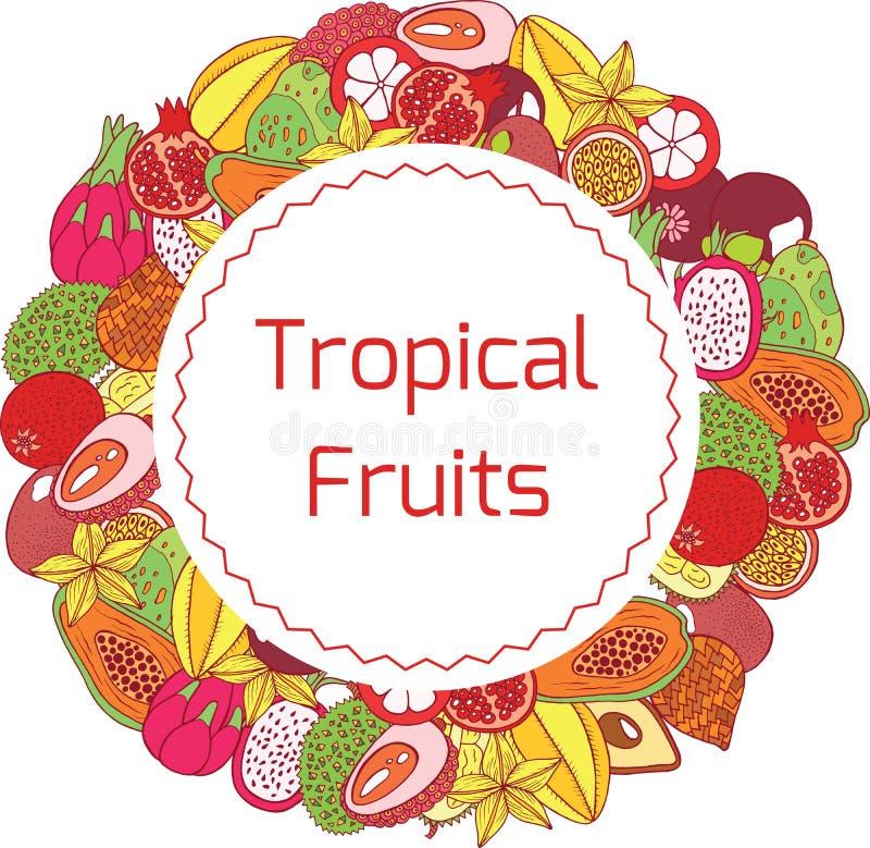 Marco y etiqueta dibujados mano colorida del círculo con exótico tropical stock de ilustración