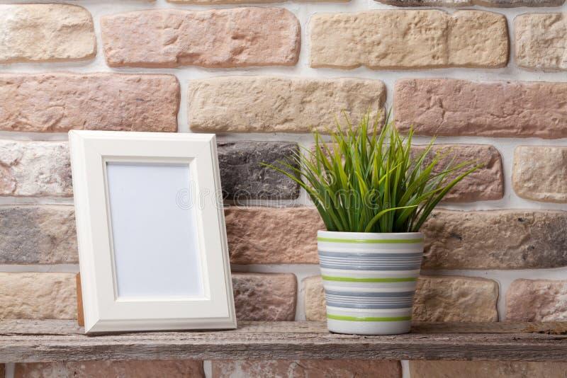 Marco y planta en blanco de la foto foto de archivo libre de regalías
