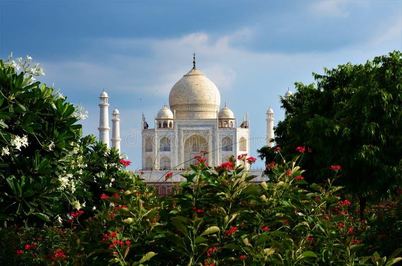 Marcos da Índia - Taj Mahal foto de stock