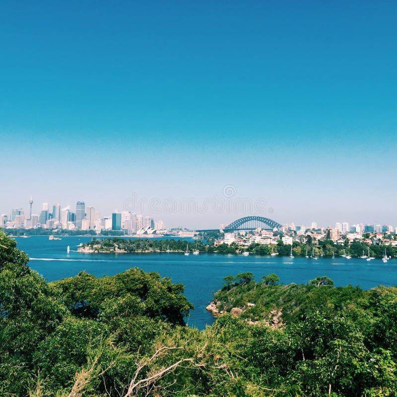 Marcos da cidade de Sydney do jardim zoológico de Taronga fotografia de stock