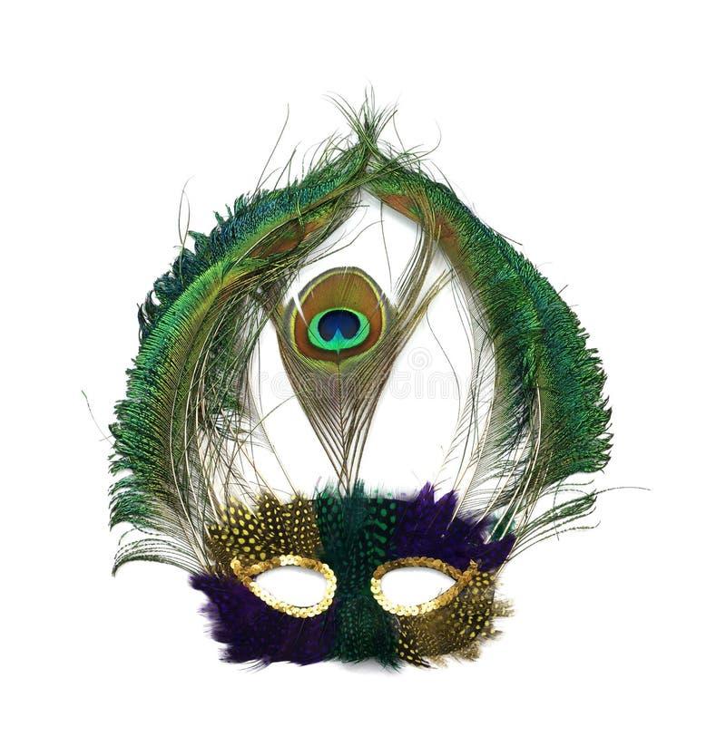 Mardi Gras peacock mask stock images