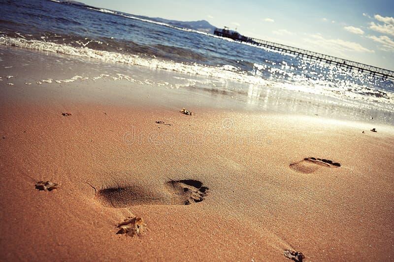 Download Mare fotografia stock. Immagine di nubi, spiaggia, mare - 22873812
