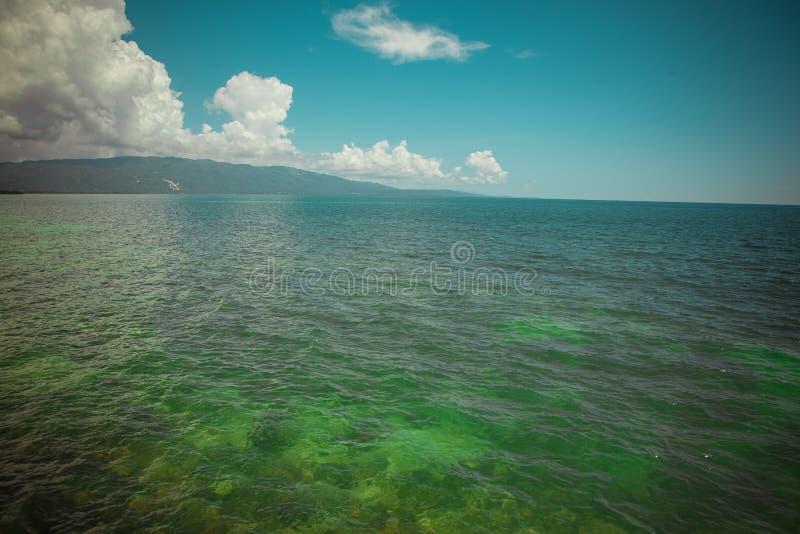 Download Mare caraibico immagine stock. Immagine di verde, bottom - 55352367