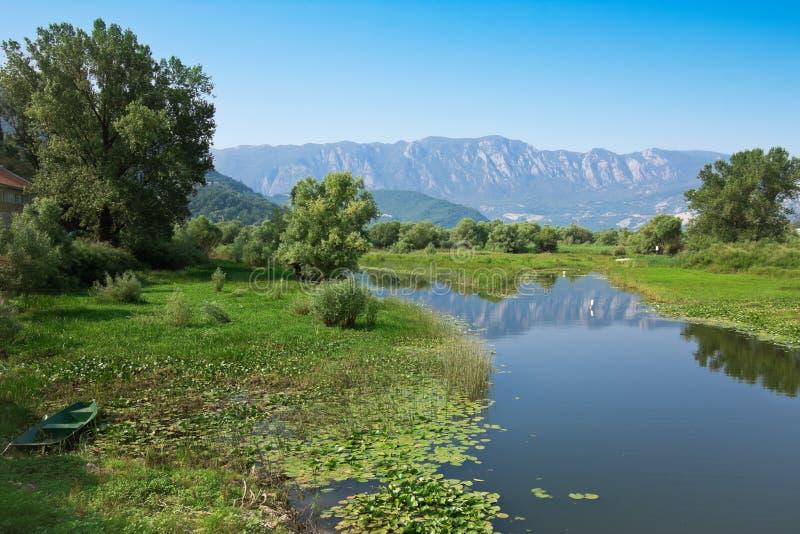 Mare de lac Skadar photographie stock libre de droits
