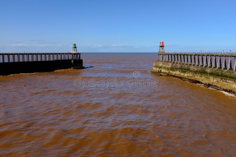 Mare di Brown a Whitby fotografia stock