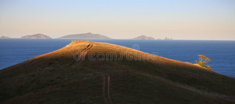 Download Mare Di Giappone. Albero Brillante. Fotografia Stock - Immagine di seascape, pietre: 7320208