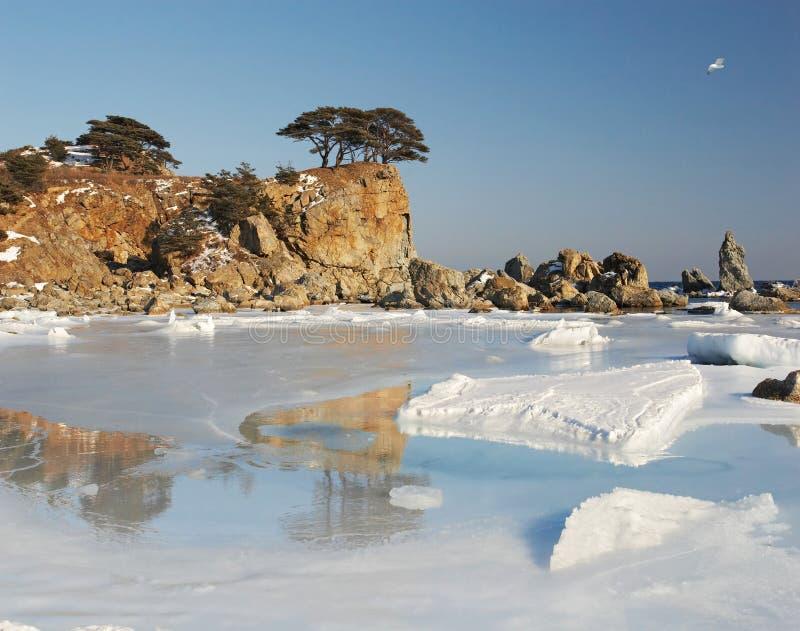 Download Mare di Giappone. Isola 2 fotografia stock. Immagine di corsa - 7319374
