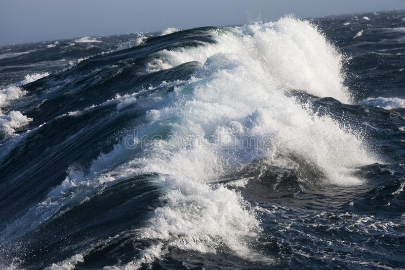Mare Glaciale Artico marino ruvido fotografia stock