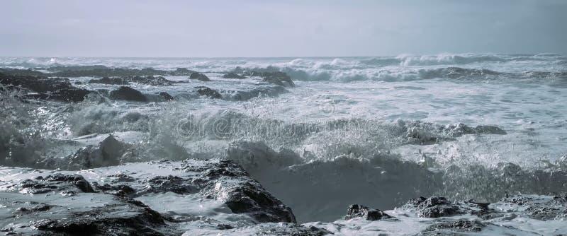 Mare, onde medie, riva rocciosa fotografia stock libera da diritti