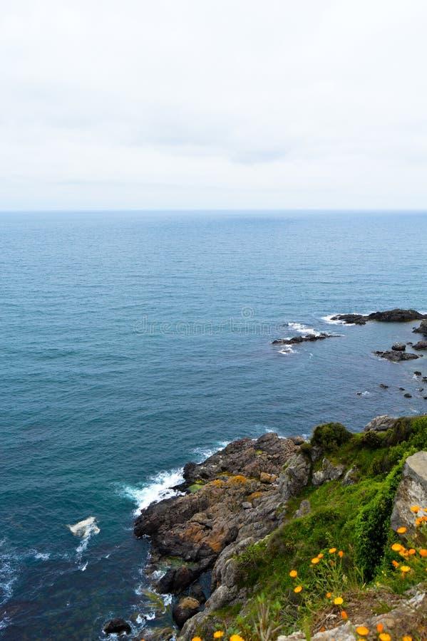 Mare ondulato in un'aria ventosa fotografie stock libere da diritti