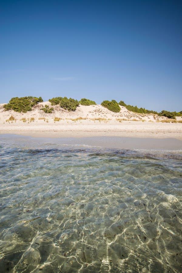 Mare trasparente ed acqua cristallina della Sardegna fotografie stock libere da diritti