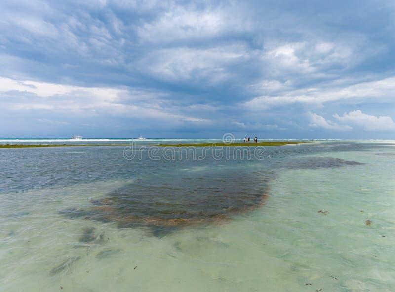 Mare tropicale fotografia stock