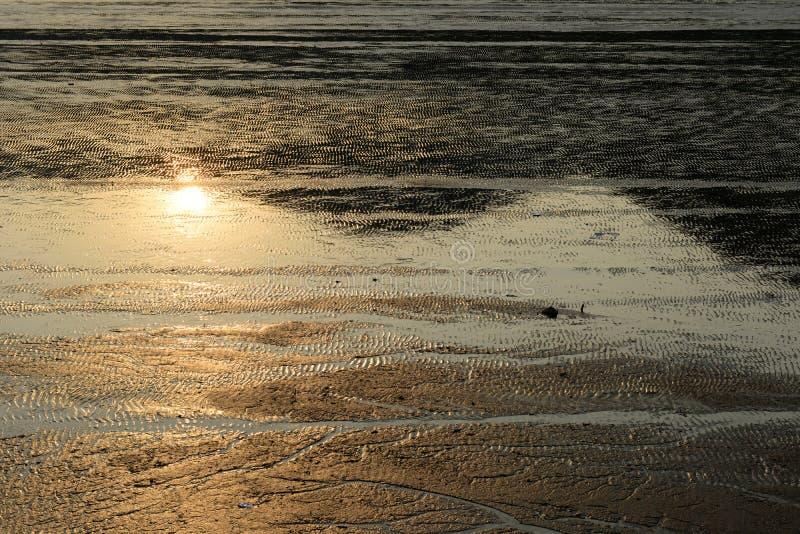 Marea baja en la playa con la reflexión de la puesta del sol fotografía de archivo