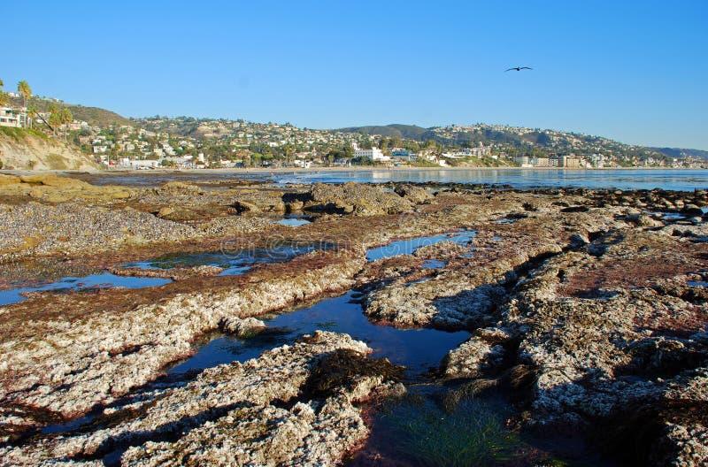 Marea baja extrema en la roca del pájaro apagado del parque de Heisler, Laguna Beach, California. fotografía de archivo