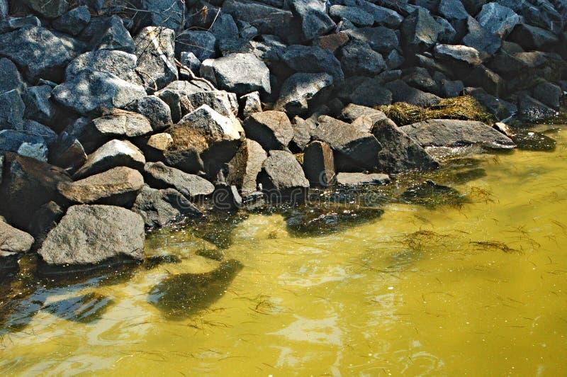 Marea del frangiflutti della baia di Chesapeake che esce fotografie stock libere da diritti