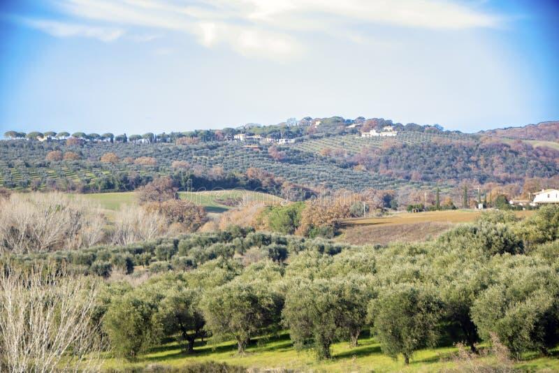 Maremma countryside royalty free stock image