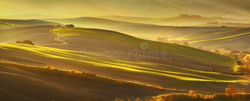 Maremma, landelijk zonsonderganglandschap Weiden en groene gebieden Tusca royalty-vrije stock afbeelding