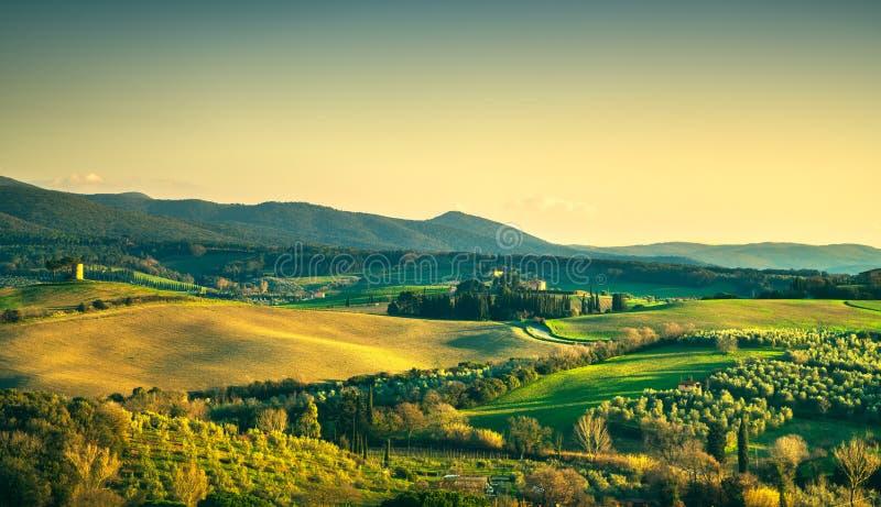 Maremma-Landschaft und Magona-Wald Bibbona, Toskana, Italien stockfoto