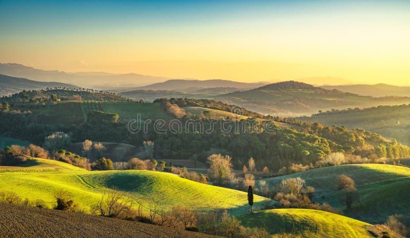 Maremma, paysage rural de lever de soleil Forêt et zone verte tuscan photographie stock libre de droits