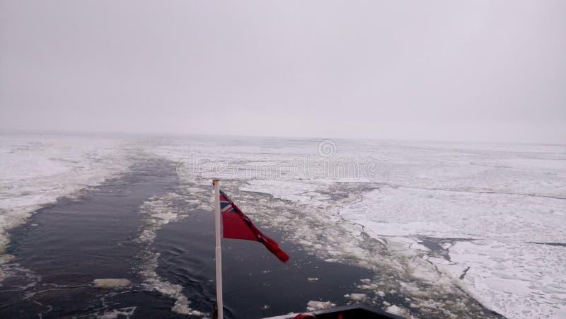 Mares congelados imagen de archivo libre de regalías