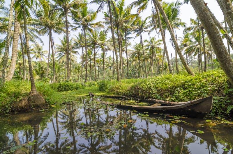Mares du Kerala photo libre de droits