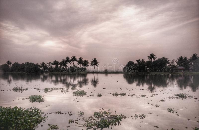 Mares Kerala image stock