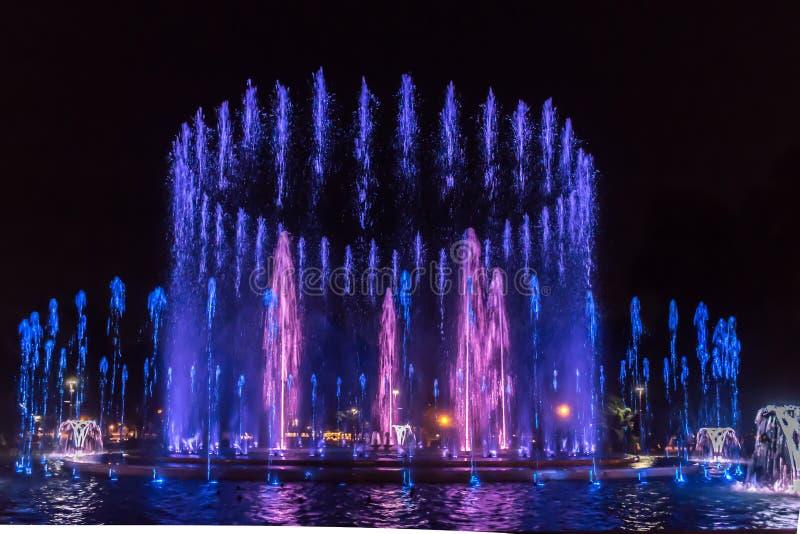 Margaret Island fountain stock photo