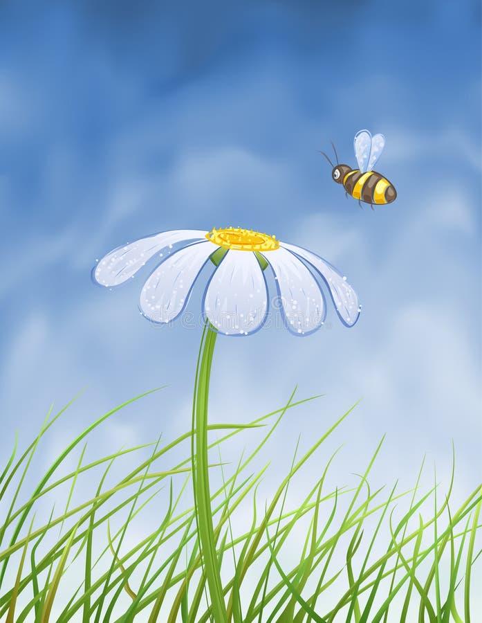 Margarida azul e uma abelha ilustração stock