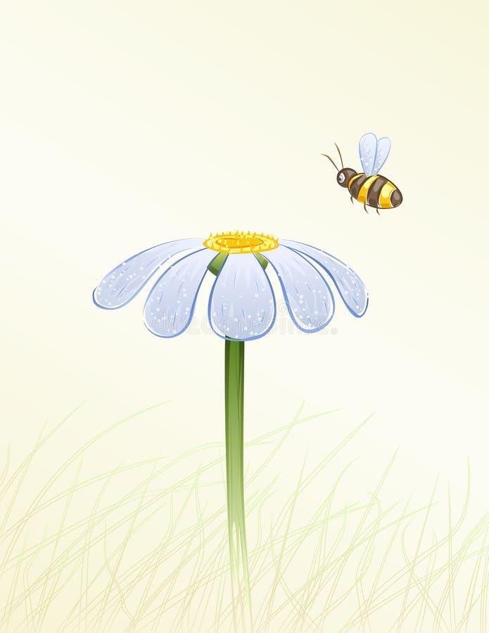Margarida azul e uma abelha ilustração do vetor