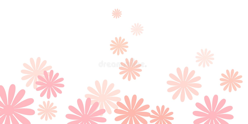 A margarida cor-de-rosa floresce o fundo ilustração royalty free