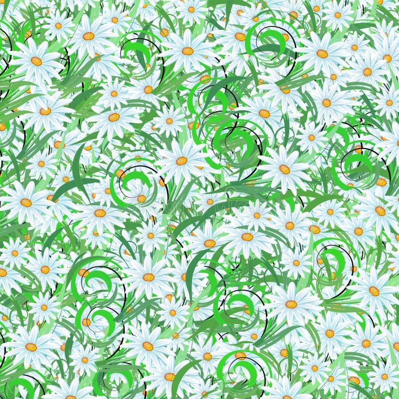 Margaridas do verão ilustração royalty free