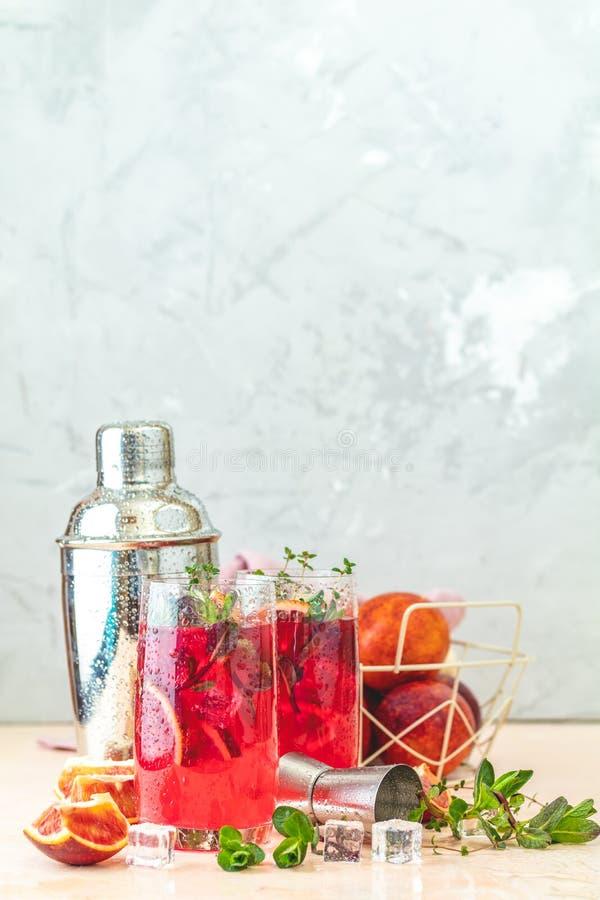 Margarita alaranjado ensanguentado do cocktail no vidro de highball fotos de stock royalty free
