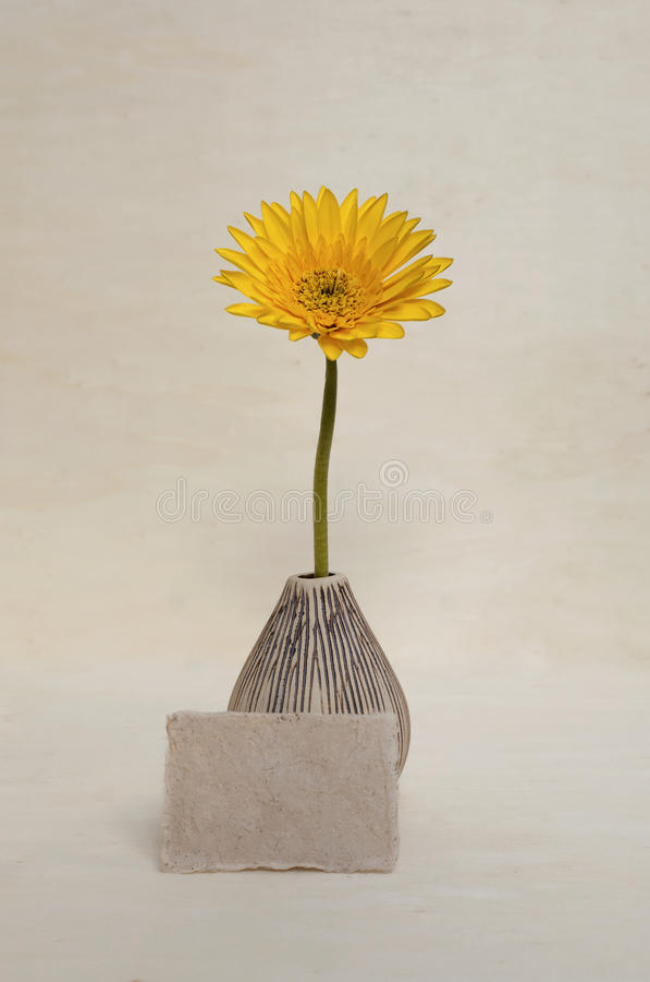 Margarita amarilla en florero del diseño con la tarjeta de papel en blanco imágenes de archivo libres de regalías