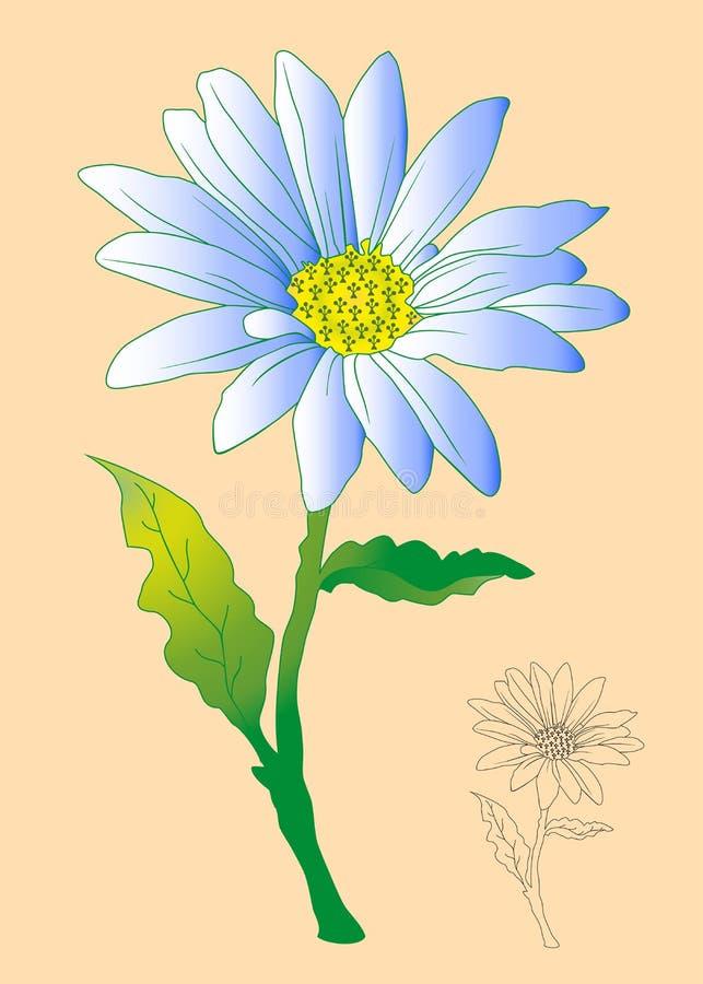 Margarita blanca de la flor stock de ilustración