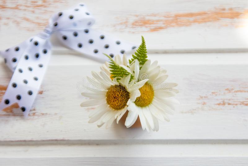 Margarita blanca en el fondo texturizado de madera blanco fotografía de archivo libre de regalías