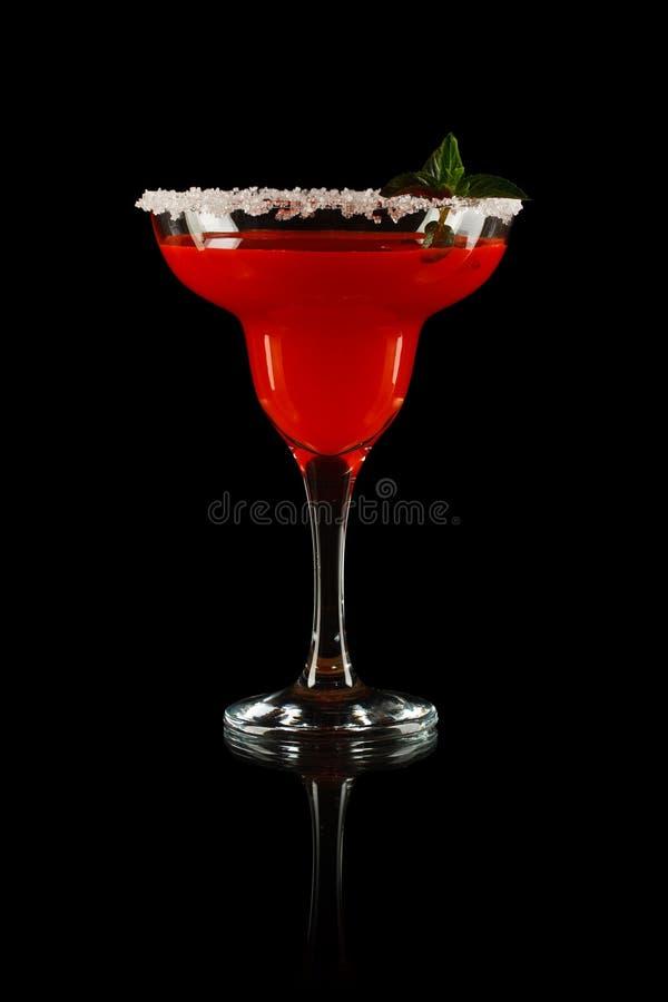 Margarita de pastèque photos libres de droits