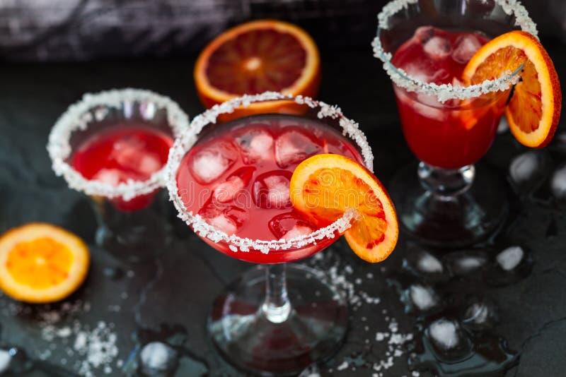 Margarita dell'arancia sanguinella fotografia stock libera da diritti