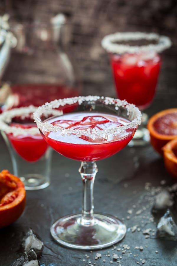 Margarita dell'arancia sanguinella immagine stock libera da diritti