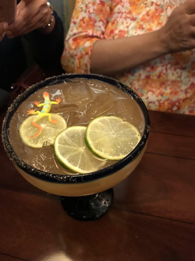 Margarita Drink royaltyfria bilder