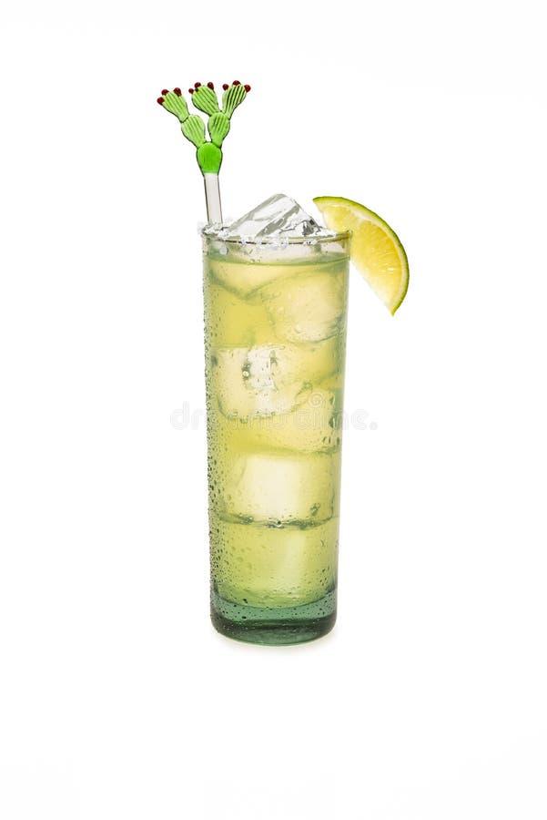 Margarita On Ice With Lime et verre sué photo libre de droits