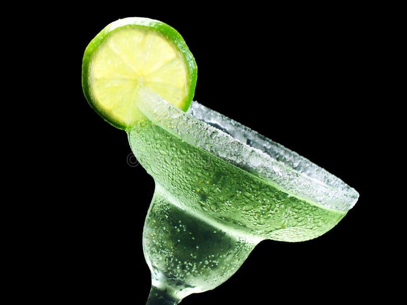 Margarita inclinato immagine stock