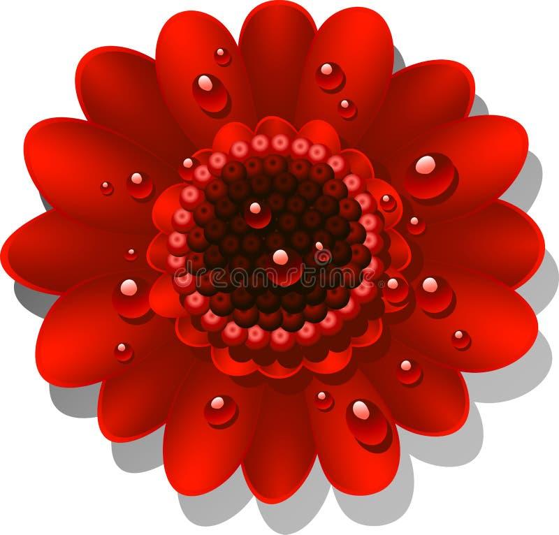 Margarita roja hermosa de Gerber stock de ilustración