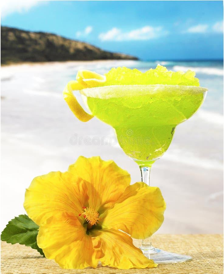 Margaritabeach. Margarita on beach blue sky sand